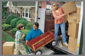 Packers and Movers Jharli