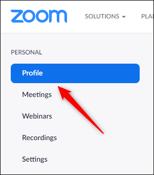 Zoom-Profile