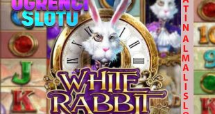 white rabbit slot bahigo giriş