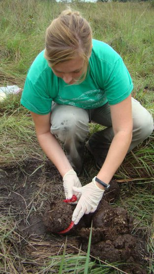 A woman gathering samples of an animal excrement.