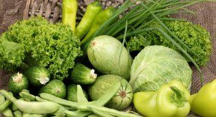 Bionutrientes