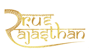Logo of True Rajasthan