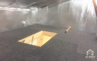 attic storage with carpet