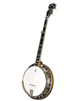 deering calico 5 string banjo