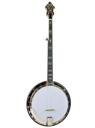 recording king rk r80 professional resonator banjo