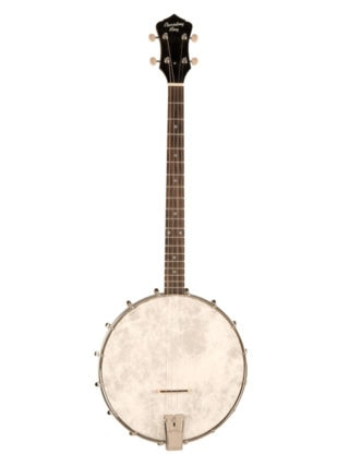 dirty 30's tenor banjo