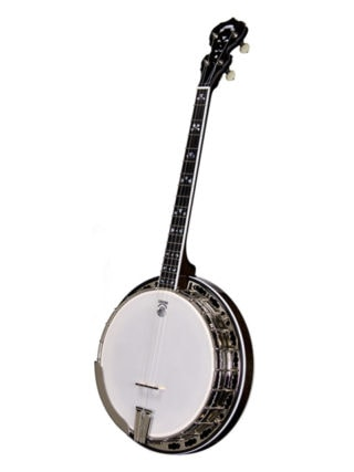 deering maple blossom 19 fret tenor banjo