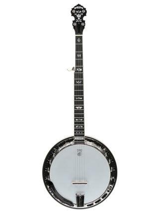 deering tenbrooks legacy model banjo