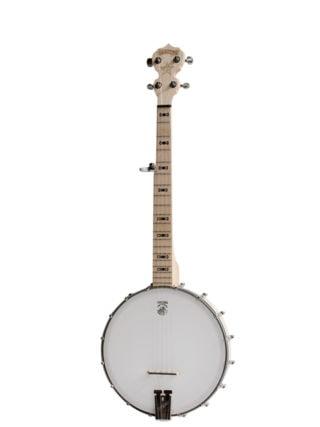 goodtime parlor banjo