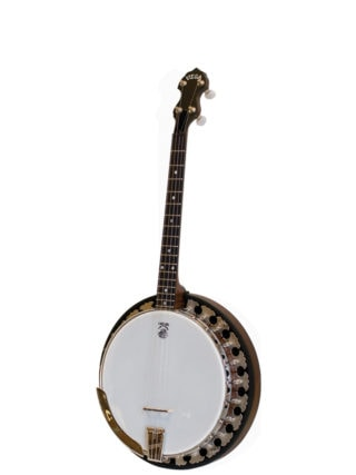 vega little wonder 17 fret tenor banjo