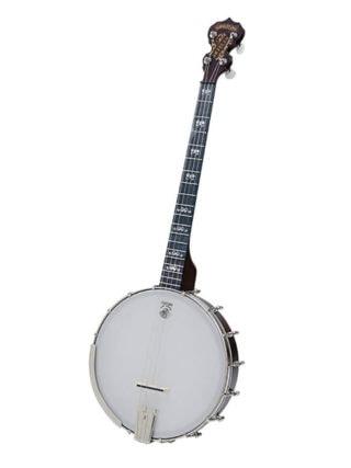 artisan goodtime 19 fret tenor banjo