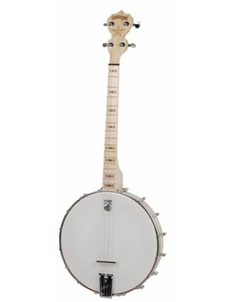 goodtime 17-fret tenor banjo