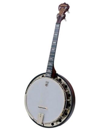 Deering Artisan Goodtime Special 17-Fret Tenor Banjo