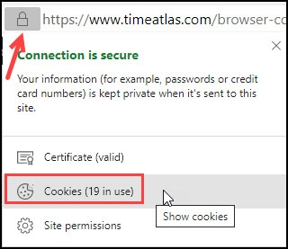 Button to see cookies in Microsoft Edge.