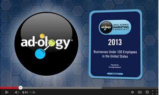 adology 2013 forecast