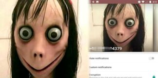 Momo su whatsapp