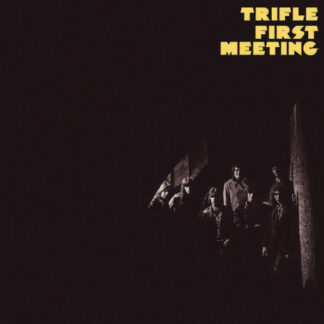 Trifle (2) - First Meeting (LP, Album, RE)