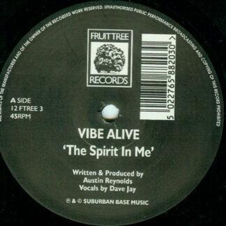 Vibe Alive - The Spirit In Me (12