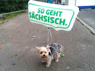 """Tag der Sachsen """"so geht sächsisch"""""""