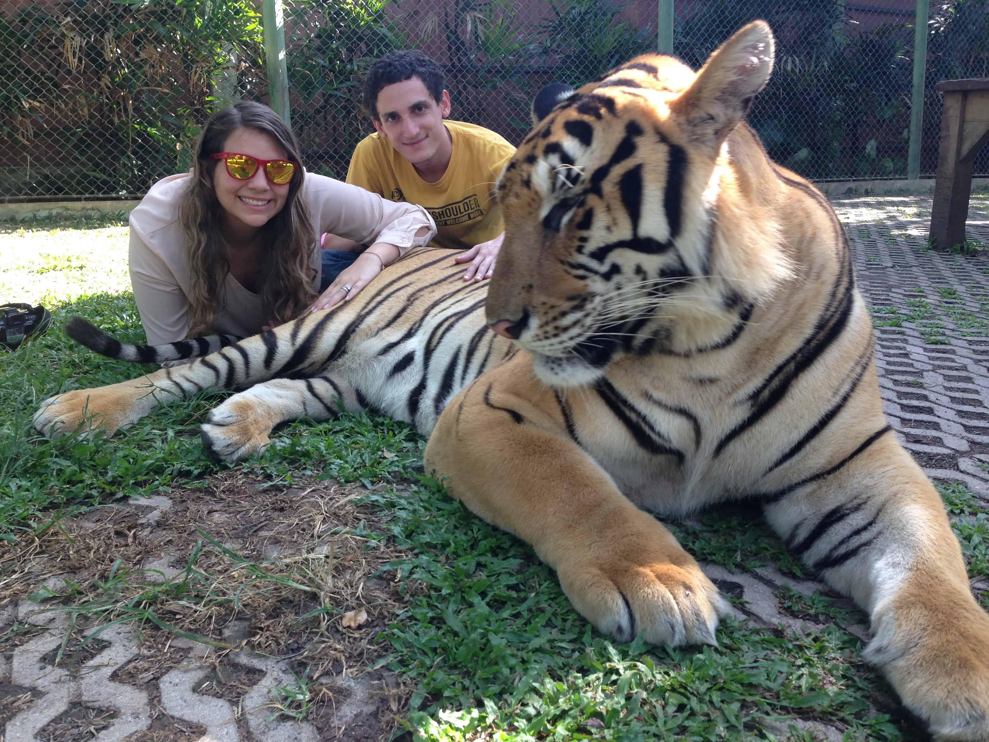 Tiger Kingdom Park