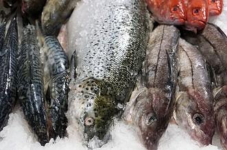 Photo of En la Semana Santa sea precavido con el consumo de pescado y sus derivados