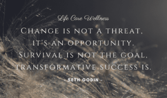 Seth godin change is not a threat quote