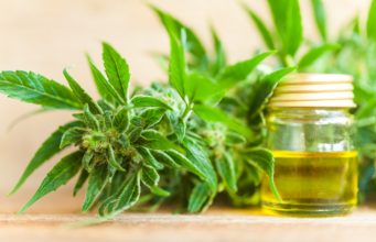 5 Important Facts You Need to Know About Cannabidiol
