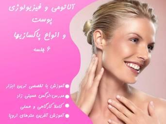 آناتومی و فیزیولوژی پوست