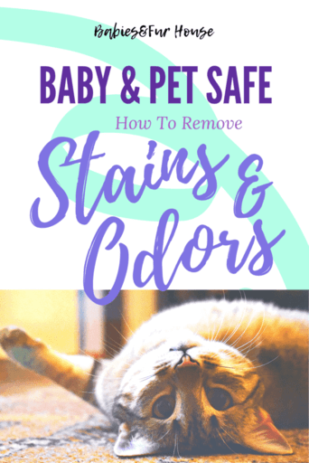 Removing Stains & Odor: Baby and Pet Safe #carpetcleaner #springcleaning #petodor #petodoreliminator #babystains #cleaning