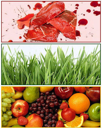 foto di carne rossa, erba e frutta