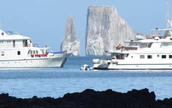 M/Y Coral I and Coral II
