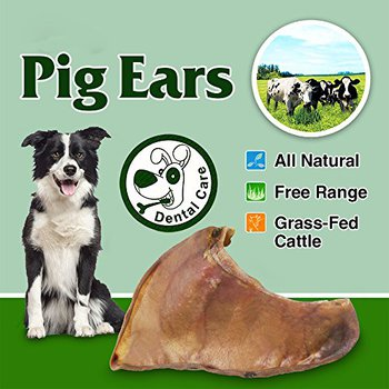 all natural pig ears for dogs