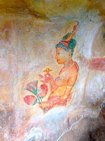 シギリヤレディの画像