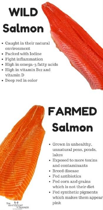 Wild Caught Salmon vs Farmed