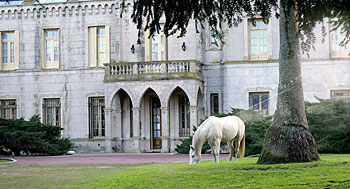 A white horse grazes in front of the castle at the La Candelaria estancia (ranch). Book a tour to an estancia outside Buenos Aires on Wander Argentina