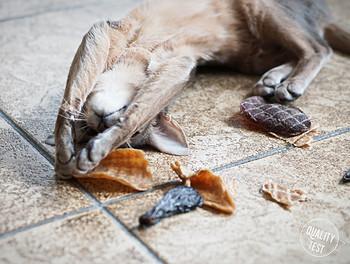 przysmaki dla kotow samo mieso 13 - Przysmaki dla kotów Samo Mięso