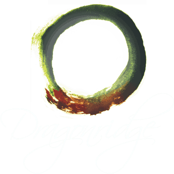 Dragonridge Swartland Natural Wine South Africa 2