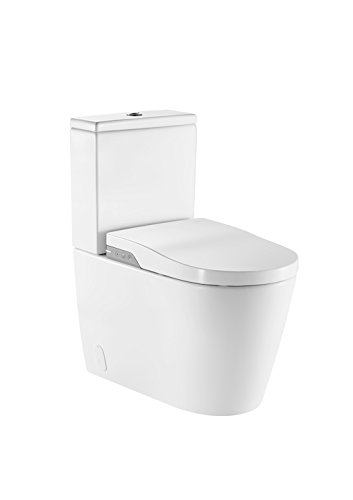 Roca in-wash inodoro con bidet