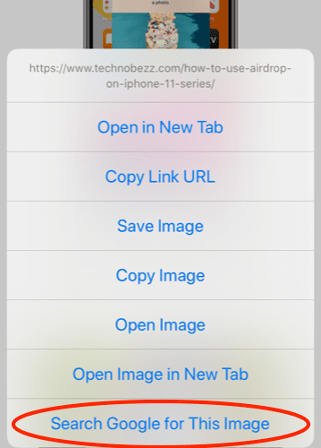 How To Do A Reverse Image Search On iPhone iOS 13 2