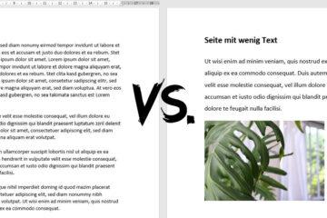 Vergleich viel Text und wenig Text_Normseite-Banner