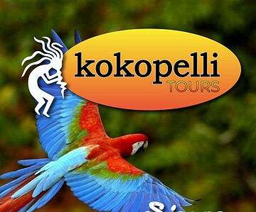 Kokopelli Wildlife Mangrove Tour