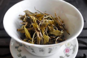 Big gaiwan with dry leaves