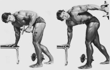 Arnold Triceps Kickbacks
