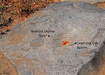 Prehistoric Grinding Rocks - Mission Trails Regional Park, San Diego, CA