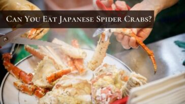 are japanese spider crabs edible