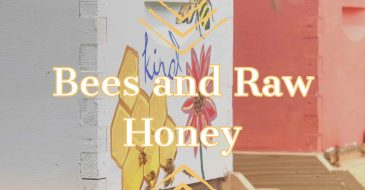 Bees and raw honey banner seven gables farm