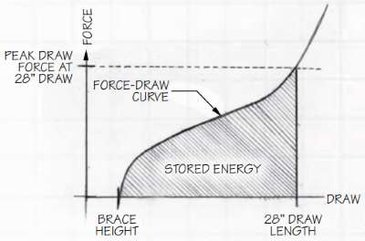 Fore and Draw Weight Curve for 28