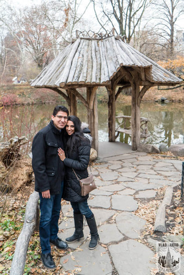 Photo 9 Wagner Cove Surprise Proposal in Central Park | VladLeto