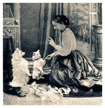 Picture: a young Maude Stanley. The picture is believed to be in the public domain - copyright expired