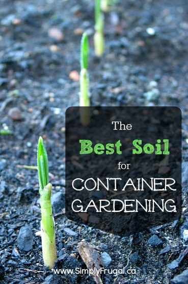 The Best Soil for Container Gardening